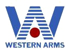CA CA249 MKII AEG;WA M4A1 CQB-R GBB Rifle;Flyye MOLLE Double M4/M16 Magazine Pouch Western_Arms